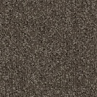 Coral Classic Entrance Matting - Taupe