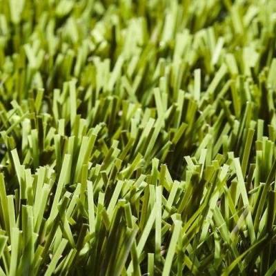 Lano Easy Lawn Sage