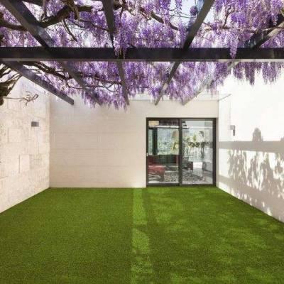 Lano Easy Lawn Sage Grass