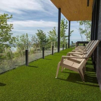 Lano Easy Lawn Verbena Grass