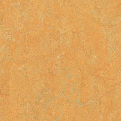 Marmoleum Real (2m wide) - Golden Saffron