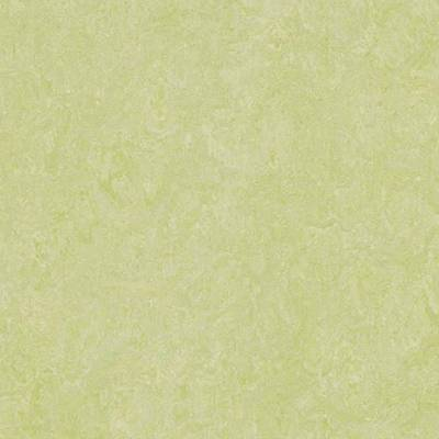 Marmoleum Real (2m wide) - Green Wellness