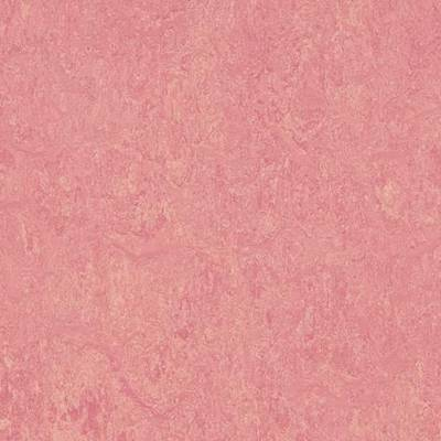 Marmoleum Real (2m wide) - Honey Suckle