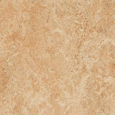 Marmoleum Real (2m wide) - Shell