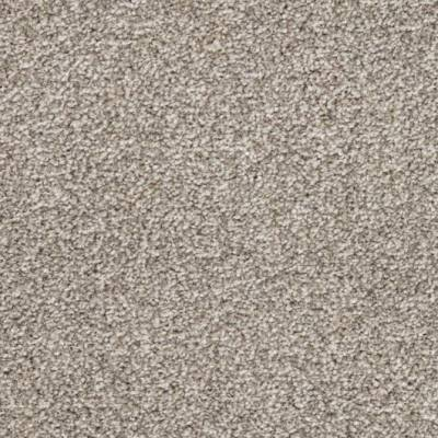 Carefree Carpets Trident Highlights - Ice