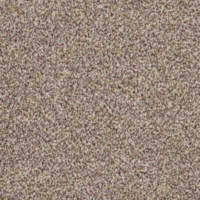 Carefree Carpets Trident Highlights - Driftwood