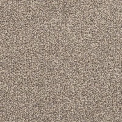 Carefree Carpets Trident Highlights - Macadamia