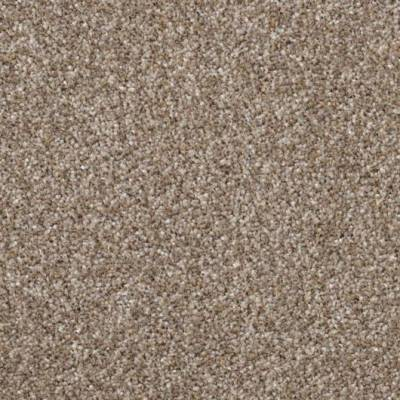 Carefree Carpets Trident Highlights - Bracken