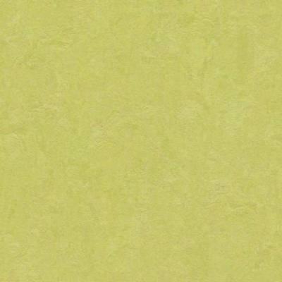 Marmoleum Click (Tile Size 30cm x 30cm) - Spring Buds