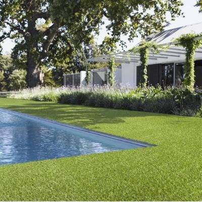 Lano Easy Lawn Anica Grass