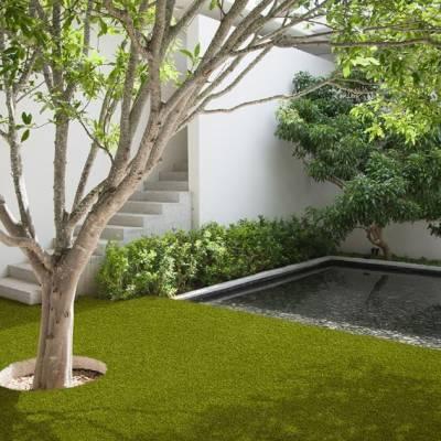 Lano Easy Lawn Valeria Grass