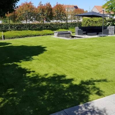 Lano Pro Lawn Florence Grass
