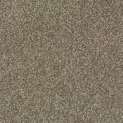Carefree Carpets Chiltern Highlights - Ice