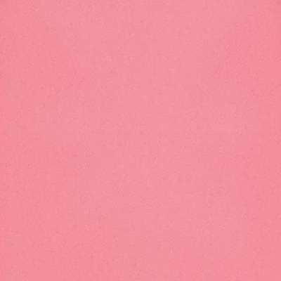 Eternal Colour - Flamingo