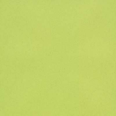 Eternal Colour Vinyl - Yellow Green