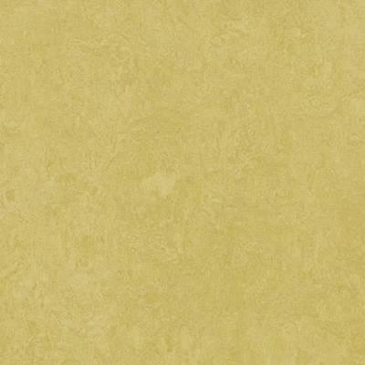 Marmoleum Fresco - Mustard