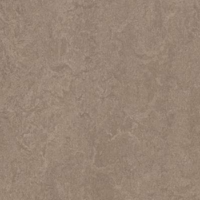 Marmoleum Fresco - Shrike