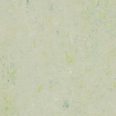 Marmoleum Splash - Salsa Verde