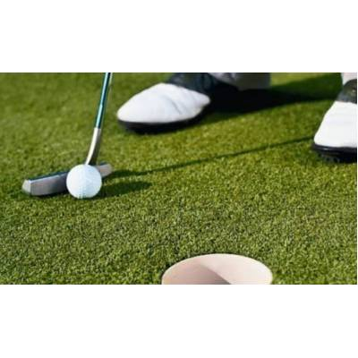 Infinity Grass - Golf & Sports