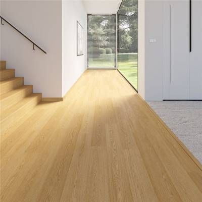 Balterio Traditions Laminate