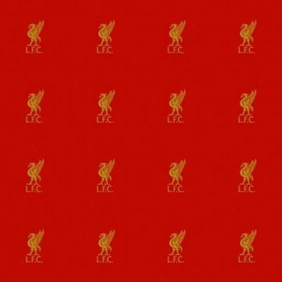 Liverpool FC Carpet (3m x 4m)
