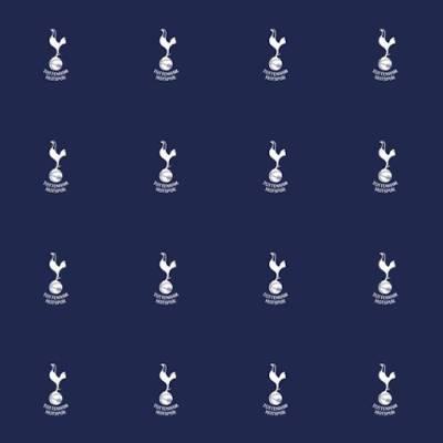Tottenham Hotspurs FC Carpet (3m x 4m)