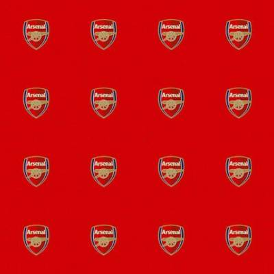 Arsenal FC Carpet (3m x 4m)