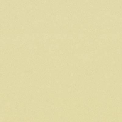 Sarlon Colour Vinyl - Soft Pistache stardust