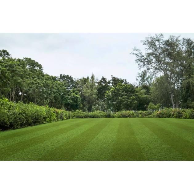 Lano Pro Lawn Multi Lane Lux Grass