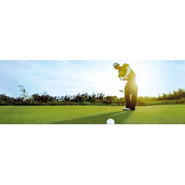 """Infinity Grass """"Golf & Sports"""" Grass"""